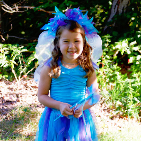 Girl's Fairy Dress Costume with Wings and Wand