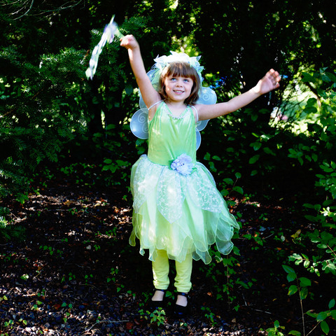 Girl's Fairy Princess Costume for Playtime